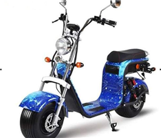 Sh13 removable battery Citycoco electric scooter