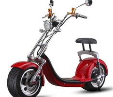 N5 Citycoco Electric scooter