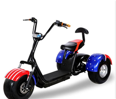 Three wheel citycoco electric scooter