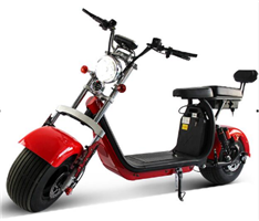 APP dual Battery Citycoco Electric scooter