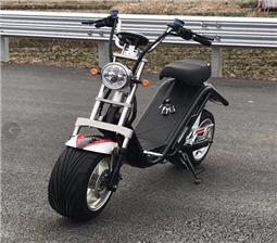 Battery removable citycoco electric scooter